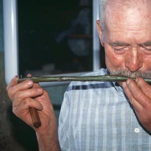 Indalecio Rodríguez Ares (Vilariño de Conso, Ourense) tocando un violín de castiñeiro. Fotografía do autor.