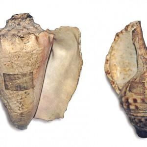 Buguinas feitas con cunchas de moluscos conservadas no Museo de Pontevedra.  Fotografía do autor.
