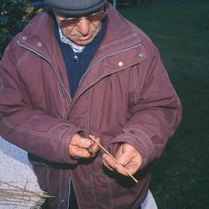 Ramón Vázquez (Bragaña, Santa María de Ordes, Toques, A Coruña) facendo unha gaita de alcacén dupla; escollendo o talo axeitado. Fotografías do autor.