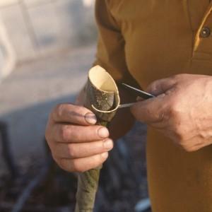 Pedro López Alonso (Donís, Cervantes, Lugo) facendo unha toba. Espetándolle un guizo na boca para que a codia non se desenrole.   Fotografías do autor.